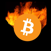 Bitcoin Holocaust
